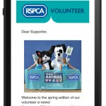 RSPCA-volunteer-newsletter-template-mobile